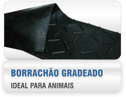 BORRACHÃO GRADEADO